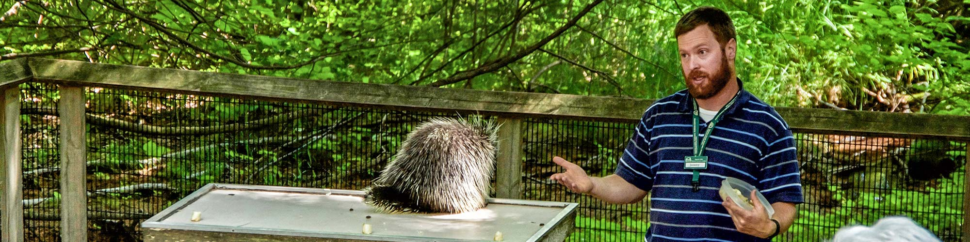 Staff talking about Porcupines